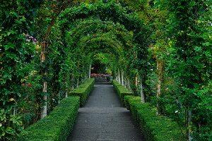 14th Annual Secret Gardens Tour