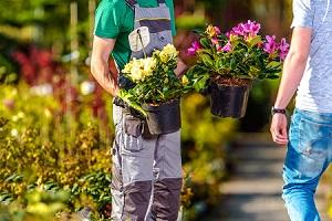 Gardening Store in Chester Springs