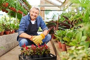 Mulch & More Gardening in Malvern