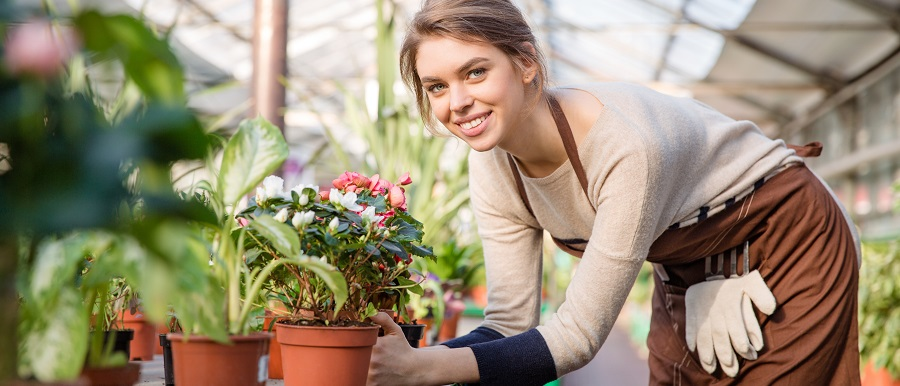 Top Nurseries and Gardening Stores near Exton